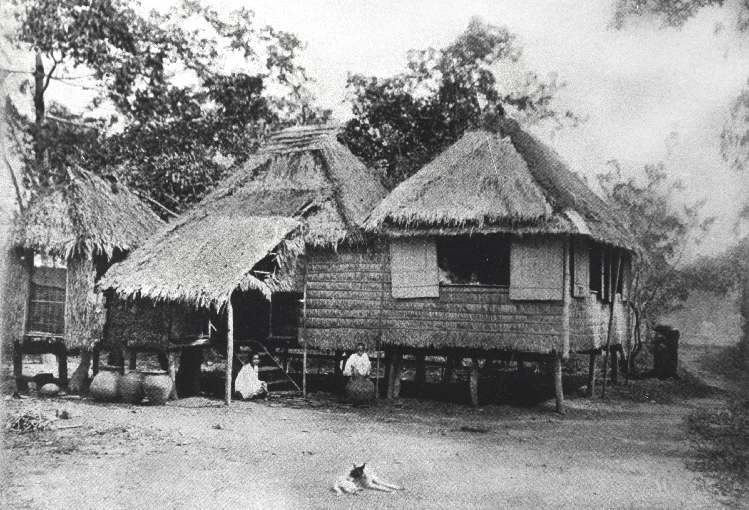 Homes in the village of Nagaba, on the island of Guimaras. Taken in the Philippines, 1906 or before. Photo courtesy of John Tewell.